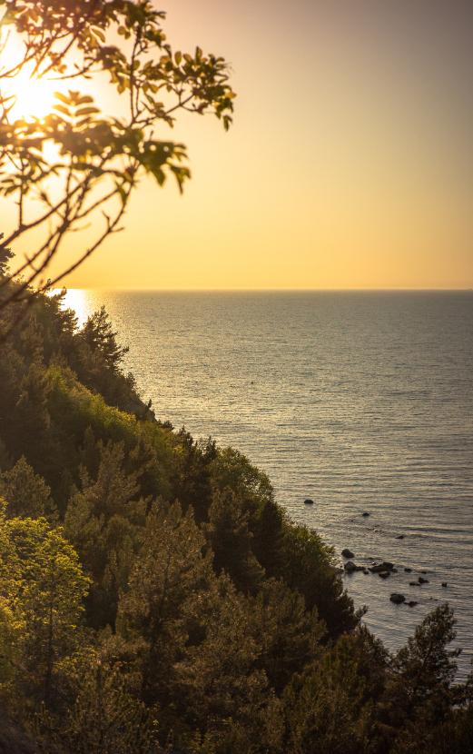 Strunjan-Cliff